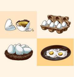 frying pan with fried eggs and scrambled omelette vector image