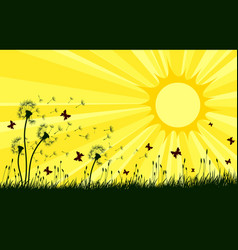 landscape with dandelions and sun vector image