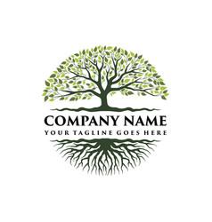 Tree life logo vector