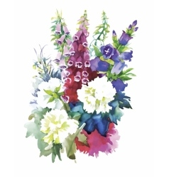 watercolor flowers in classical style on a white vector image