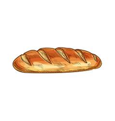 Wheat bread loaf sketch icon vector