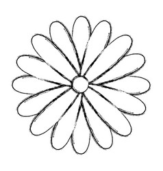 Blurred silhouette sunflower floral icon design vector