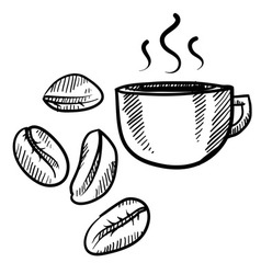 doodle coffee beans vector image