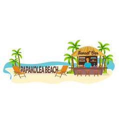 papakolea beach hawaii travel palm drink vector image