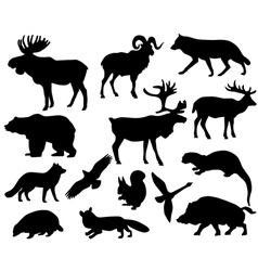 Animals of Europe vector