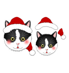 Black white cat santa claus vector