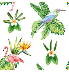 composition tropical bird flowers and plants vector image