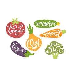 fresh vegetables prints set tomato cucumber vector image