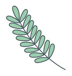 Nature leafs cartoon vector