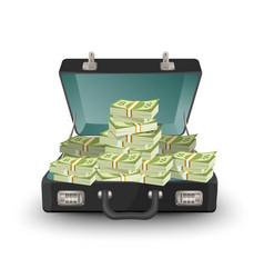 Open briefcase full money vector