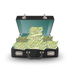 Open briefcase full of money vector