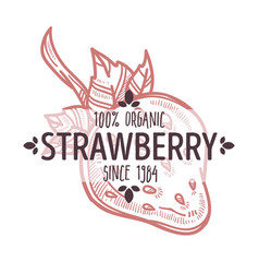 strawberry isolated icon with lettering organic vector image