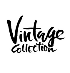 Vinage collection ink handwritten lettering vector