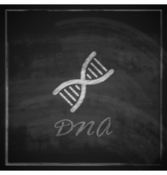 With DNA icon on blackboard background vector