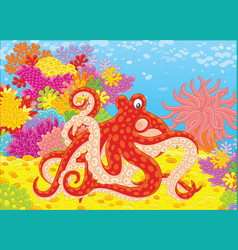 Spotted octopus vector