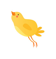 cute happy baby chicken funny cartoon bird vector image