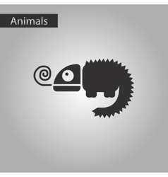 black and white style icon chameleon vector image