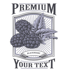 Blackberry vintage label vector