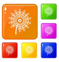 circle dandelion icons set color vector image