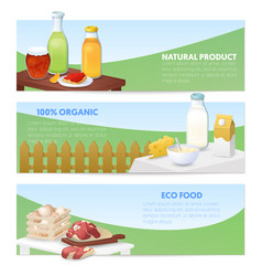 eco food natural products horizontal banners vector image