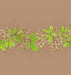 elderflower pattern vector image