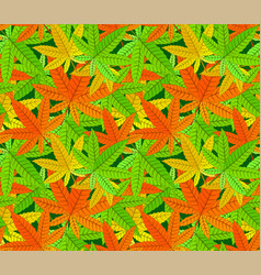 pattern with various colored cannabis leaves vector image