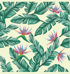 seamless composition tropical banana leaves and vector image