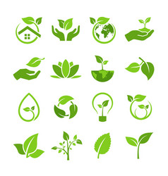 set green leaves with ecology and vector image