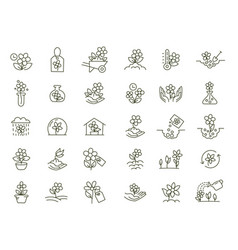 Set icons growing flowers seedling shoots vector