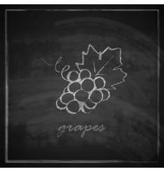 With grapes on blackboard background vector