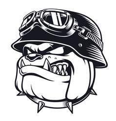 bulldog biker with helmet vector image vector image