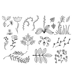 set of black hand drawn floral design elements vector image vector image