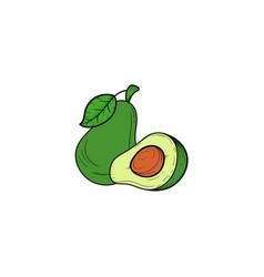 avocado hand drawn icon clipart vector image