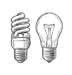 bulb lamp sketch electricity electric light vector image