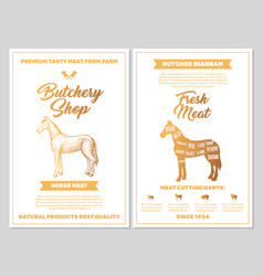 butchery shop poster with horse meat cutting vector image