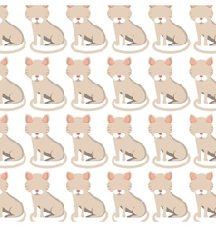 cute cat pattern isolated icon vector image