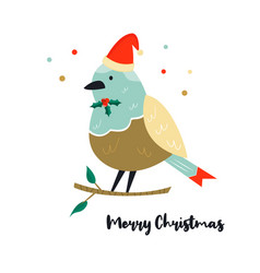 cute robin bird on a branch christmas vector image