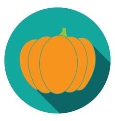Flat pumpkin icon colorful vector image