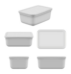 plastic food container mock up empty boxes vector image