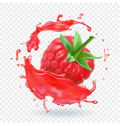 raspberry in berry juice splash vector image