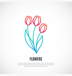 Red tulips bouquet isolated on white background vector