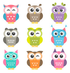 set colorful owls vector image