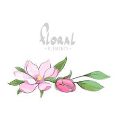 tender apple blossom vector image