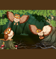 three owls flying in forest vector image