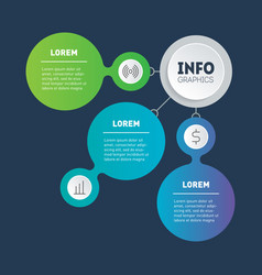 web template info chart infographic or diagram vector image