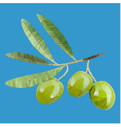 A branch an olive tree vector
