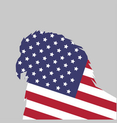 american flag bald vector image