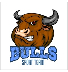 Bull Head Mascot - for sport vector image