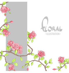 red delicate roses on a gray background vector image