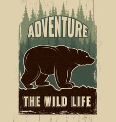 retro poster with picture of wild bear vector image